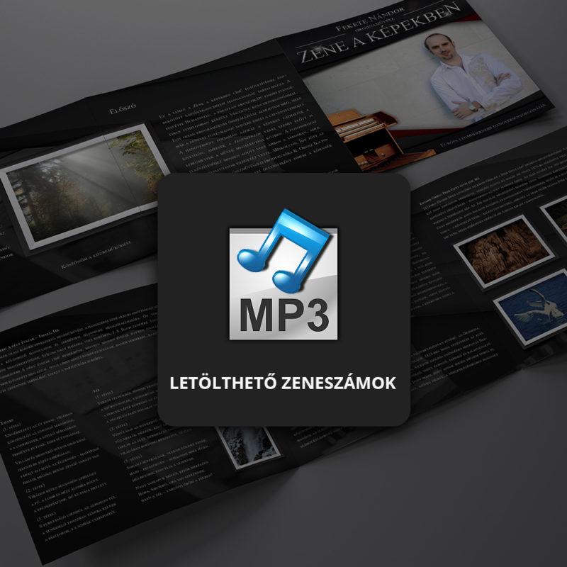 Zeneszámok (MP3)