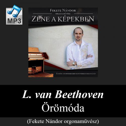 webshop_l-_van_beethoven_-_oromoda